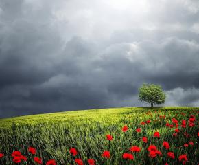 Времето - краткотраен дъжд и температури до 27 градуса