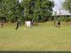 Второто ниво на аматьорския футбол в област Ямбол започва този уикенд