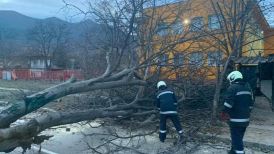 Силният вятър остави без ток потребители в общините Враца, Мездра и Мизия. Екипи на елекроразпределителното дружество ЧЕЗ работят за възстановяване на...