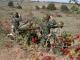 Ямболските артилеристи на лагер в Корен