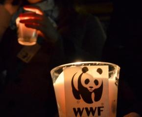 """За поредна година община Сливен се включва в международната инициатива """"Часът на Земята"""""""