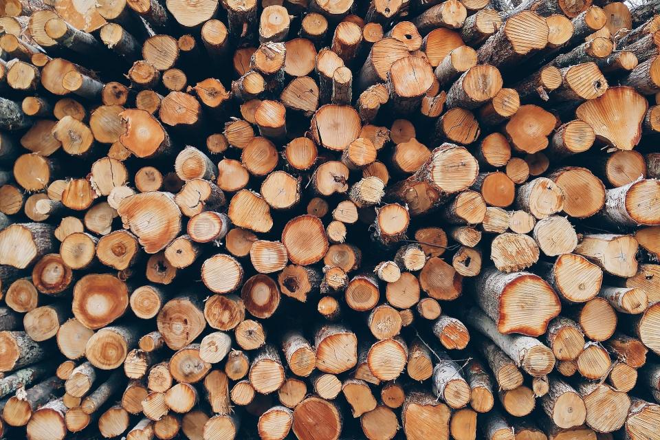 Екип на Изпълнителна агенция по горите задържа товарен автомобил с незаконна иглолистна строителна дървесина при проверка в района на Държавно горско стопанство...