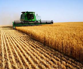 Зам.- министърът на земеделието Чавдар Маринов бе освободен от своя пост днес