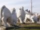 Започна поетапното почистване и осветяване на паметници в град Ямбол (видео)