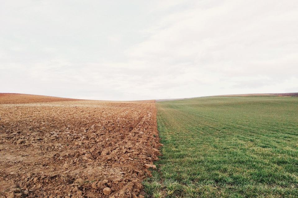 """От 1-ви септември 2020 г., вторник, започва преброяването на земеделските стопанства в страната, съобщиха от """"Агрозона"""". Анкетирането ще продължи до 18..."""