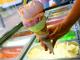 Започват извънредни проверки на търговци на сладолед