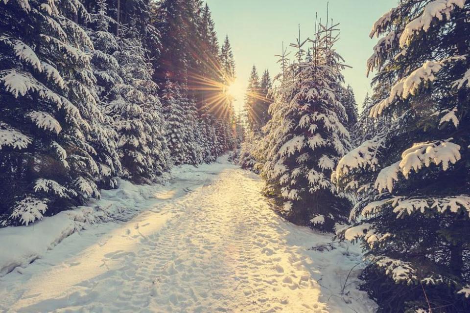След температури сутринта от минус 13° и минус 3°, следобед ни очакват стойности между 2° и 7°. Ще бъде слънчево. Ще духа слаб до умерен вятър от запад-югозапад. Слънчево...