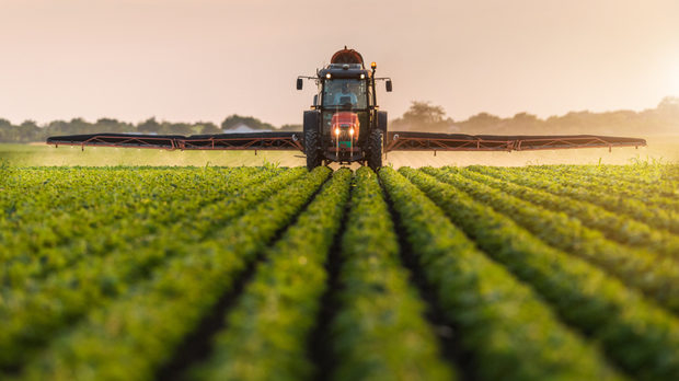 Днес със своя заповед министърът на здравеопазването издаде нареждания във връзка с работата на кооперативните и фермерски пазари, за обработването на...