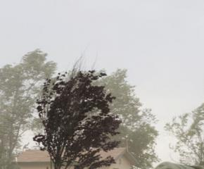 Жълт код за силен вятър в област Ямбол