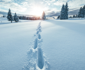 Жълт код за сняг и дъжд в цялата страна днес
