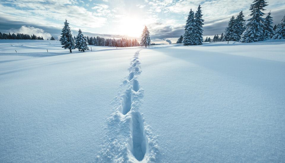 Жълт код за потенциално опасно време е в сила днес - 26 януари, за цялата страна, съобщават от БНР. На много места ще има валежи от сняг, а в източните...