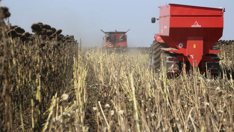 Жътвата на маслодайния слънчоглед в Ямболска област приключва, прибрани са близо 75...