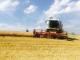 Жътвата в Ямболска област започна с по-ниски добиви