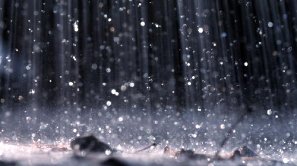Значителни количества дъжд са отчетени на територията на община Сливен през последното денонощие, сочат данни на Метеорологичната обсерватория при НИМХ-БАН...