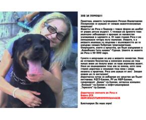 Зов за помощ за Роси Пачерезова